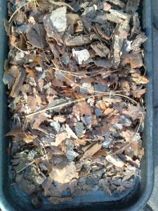 Výstelka brhlíka se skládá z borové kůry, dřevního trouchu a příměsi dalších materiálů