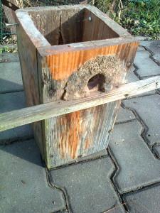 """Brhlík vchod do budky zužuje pomocí """"obezdívky"""" z jílu a kamínků"""